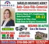 BAÑUELOS INSURANCE AGENCY
