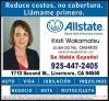 Kristi Wakamatsu, Allstate